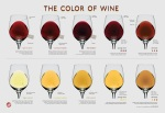 winefolly wine chart